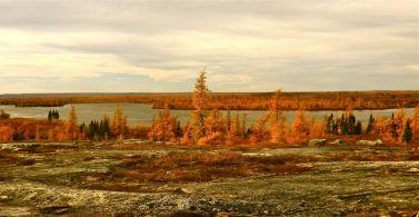 Kuujjuaq 54